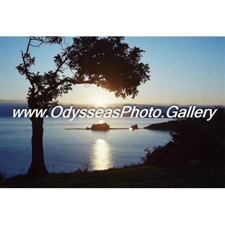 Sunrise - Bath of Aphrodite - Sea D1000167c