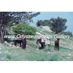 Old Citizens of Surrounding Villages D1000232c